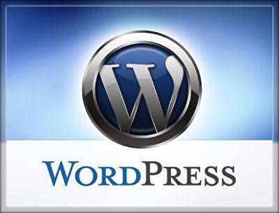 「tool+」は副業ならlivedoorブログ、本業ならWordPressで!
