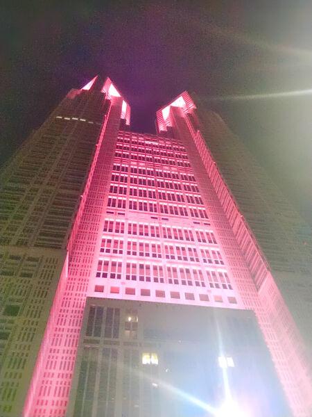 2020.10.18 東京都庁ライトアップ (3)